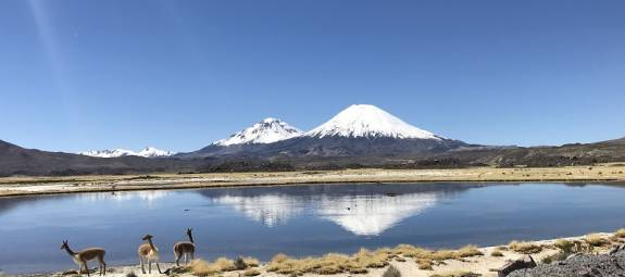 ALTIPLANO CHILENO