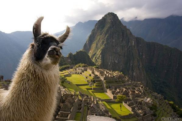 5 D�as - 4 Noches: Arica - Cusco � Valle Sagrado - Machu Picchu - Arica,, Opci�n 2